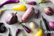 9 نوع شگفت انگیز بادنجان در جهان و خواص درمانی آن ها