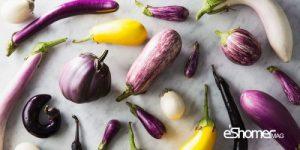 مجله خبری ایشومر 9-نوع-شگفت-انگیز-بادنجان-در-جهان-و-خواص-درمانی-آن-ها-مجله-خبری-ایشومر-300x150 9 نوع شگفت انگیز بادنجان در جهان و خواص درمانی آن ها سبک زندگي میوه درمانی  سبزیجات خواص درمانی سبزیجات بادنجان بادمجان انواع بادنجان