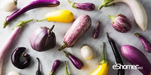 مجله خبری ایشومر 9-نوع-شگفت-انگیز-بادنجان-در-جهان-و-خواص-درمانی-آن-ها-مجله-خبری-ایشومر 9 نوع شگفت انگیز بادنجان در جهان و خواص درمانی آن ها سبک زندگي میوه درمانی  سبزیجات خواص درمانی سبزیجات بادنجان بادمجان انواع بادنجان