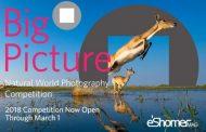 فراخوان عکاسی بین المللی BigPicture 2018 مسابقه هنری