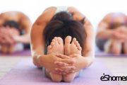 آشنایی با انواع سبک ها در یوگا ، سبک یوگا آنوسارا