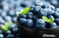 بلوبری و خواص ضد سرطانی آن در میوه درمانی 1