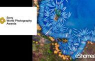 فراخوان عکاسی مسابقه هنری جوایز عکاسی سونی 2019