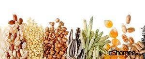 تخمه ها و دانه هایی که تأثیر زیادی در سلامتی گوارش دارند