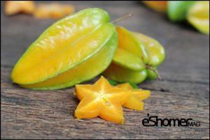 مجله خبری ایشومر STAR-FRUIT-mag-eshomer-300x201 انواع میوه های استوایی وخواص شگفت انگیز درمانی آنها(قسمت دوم) آشپزی و غذا سبک زندگي  میوه های شگفت درمانی خواص چمپداک انواع انگیز استوایی استارفروت CEMPEDAK