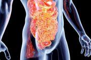 اثر شگفت انگیز سیستم گوارشی روده درخلق و خو و رفتار افراد