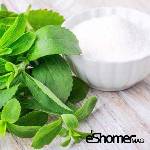 مجله خبری ایشومر spinach-mag-eshomer1-1 آیا شکر برگ برای انسانها و افراد دیابتی مفید است سبک زندگي سلامت و پزشکی وزن مفید کاهش ضد شکر دیابتی خون برگ التهاب افراد