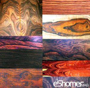 شناسایی انواع چوب و کاربرد آن ها در صنایع مختلف 2