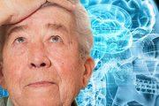 نشانه و علائم پیری از چین خوردگی های مغز
