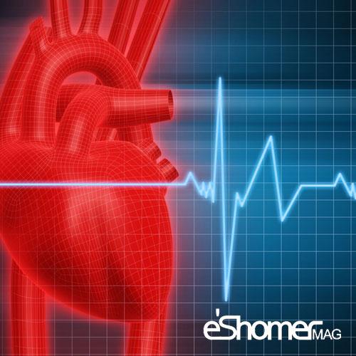 مجله خبری ایشومر پس-از-انجام-آنژیوگرافی-چه-مواردی-را-باید-رعایت-کنیم-مجله-خبری-ایشومر پس از انجام آنژیوگرافی چه مواردی را باید رعایت کنیم سبک زندگي سلامت و پزشکی مواردی قلب عروق کرونر سلامت و پزشکی سلامت رعایت درمان بیماری های قلبی پزشکی آنژیوگرافی