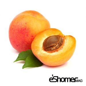زرد آلو و خواص ضد سرطانی آن در میوه درمانی
