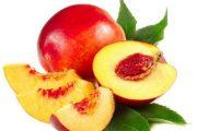 شلیل و خواص ضد سرطانی آن در میوه درمانی