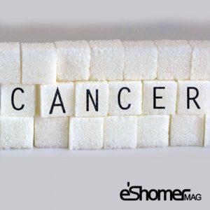 مجله خبری ایشومر 5-عاملی-که-سلولهای-سرطانی-از-آن-تغذیه-می-شوند-مجله-خبری-ایشومر-300x300 5 عاملی که سلولهای سرطانی از آن تغذیه می شوند سبک زندگي سلامت و پزشکی  سلامت سرطان درمانی درمان خواص درمانی پزشکی