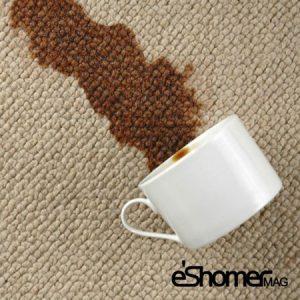 راهکارهای از بین بردن لکه ها _ لکه های روی فرش و موکت