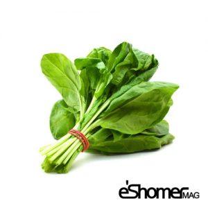 شناخت انواع سبزیجات و خواص درمانی آنها ، اسفناج