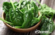 درمان پوکی استخوان با این مواد غذایی کلسیم دار 8