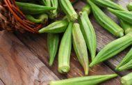 شناخت انواع سبزیجات و خواص درمانی آنها ، بامیه