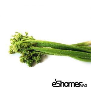 مجله خبری ایشومر شناخت-انواع-سبزیجات-و-خواص-درمانی-آنها-،-ریواس-مجله-خبری-ایشومر-300x300 شناخت انواع سبزیجات و خواص درمانی آنها ، ریواس سبک زندگي میوه درمانی  گیاهی گیاه سبزیجات سبزی ریواس درمان خواص درمانی خواص