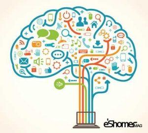 مجله خبری ایشومر مغز-اطلاعات-اضافی-را-به-صورت-اوتوماتیک-پاک-میکند-300x270 مغز اطلاعات اضافی را به صورت اوتوماتیک پاک میکند تازه ها سبک زندگي  مغز و اعصاب تفکر سبک زندگی تازه ترین ها