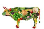میوه آلو غذایی نیروبخش و منبع آهنی غنی برای گیاه خوران