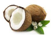 نارگیل و خواص ضد سرطانی آن در میوه درمانی