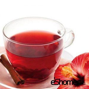 مجله خبری ایشومر چای-ترش-با-خواص-درمانی-خنک-کننده-و-شاداب-کننده-بدن-مجله-خبری-ایشومر-300x300 چای ترش با خواص درمانی خنک کننده و شاداب کننده بدن تازه ها سبک زندگي  نوشیدنی گیاهی شربت دمنوش درمانی خواص درمانی خواص چای