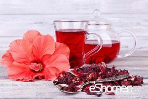 مجله خبری ایشومر چای-ترش-با-خواص-درمانی-خنک-کننده-و-شاداب-کننده-بدن-1-مجله-خبری-ایشومر-300x201 چای ترش با خواص درمانی خنک کننده و شاداب کننده بدن تازه ها سبک زندگي  نوشیدنی گیاهی شربت دمنوش درمانی خواص درمانی خواص چای