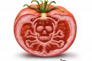 از چه غذاهایی بیشتر بپرهیزید تا دچار  مسمومیت غذایی نشوید