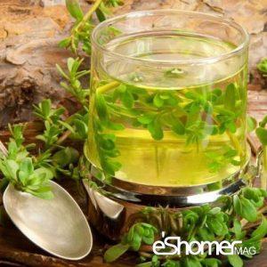 مجله خبری ایشومر دمنوش-برگ-درخت-زبان-گنجشک-و-خواص-آن-در-مقابله-با-سلول-های-سرطانی-مجله-خبری-ایشومر-300x300 دمنوش برگ درخت زبان گنجشک و خواص آن در مقابله با سلول های سرطانی تازه ها سبک زندگي  نوشیدنی شربت دمنوش گیاهی خواص درمانی دمنوش چای Herbal Tea