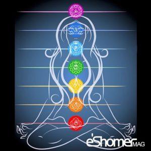مجله خبری ایشومر معرفی-چاکرای-خاجی-سوادهیستانا-دریوگا-مجله-خبری-ایشومر-300x300 معرفی چاکرای خاجی ( سوادهیستانا ) دریوگا سبک زندگي کامیابی  یوگا درمانی یوگا چاکرای خاجی چاکرا انرژی آموزش یوگا آسانا آرامش با یوگا Yoga