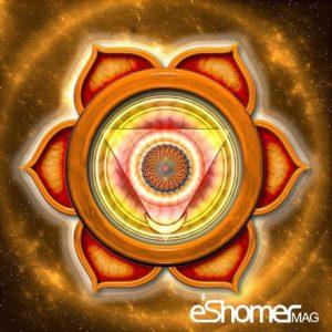 مجله خبری ایشومر معرفی-چاکرای-پایه-مولادهارا-چاکرا-در-یوگا-مجله-خبری-ایشومر-300x300 معرفی چاکرای پایه ( مولادهارا چاکرا ) در یوگا سبک زندگي کامیابی  یوگا چاکرای پایه چاکرا انرژی آموزش یوگا آسانا آرامش با یوگا Yoga