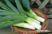 شناخت انواع سبزیجات خواص درمانی سبزیجات ، تره فرنگی