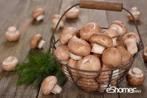 شناخت انواع سبزیجات خواص درمانی سبزیجات ، قارچ
