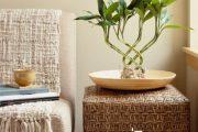 آشنایی با نمادهای فنگ شویی در طراحی داخلی ، بامبو