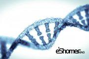 ویرایش RNA برای درمان بیماری ALS