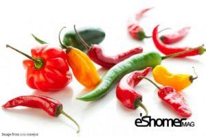 شناخت انواع سبزیجات ، خواص درمانی سبزیجات ، فلفل ها