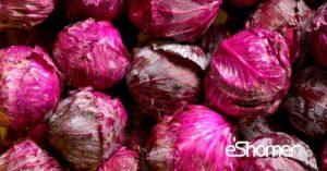 شناخت انواع سبزیجات ، خواص درمانی سبزیجات ، کلم قرمز
