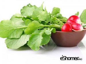 مجله خبری ایشومر شناخت-انواع-سبزیجات-،-خواص-درمانی-سبزیجات-،-برگ-تربچه-21-مجله-خبری-ایشومر-300x225 شناخت انواع سبزیجات ، خواص درمانی سبزیجات ، برگ تربچه 2 سبک زندگي میوه درمانی  کاهش وزن سبزیجات خواص درمانی سبزیجات تربچه برگ تربچه افزایش ایمنی بدن