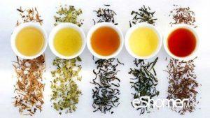شناخت انواع چای و خواص درمانی نوشیدن آنها