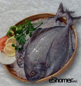 شناخت و نحوه پخت انواع ماهی جنوب در آموزش آشپزی ، حلوای سیاه