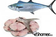 شناخت و نحوه پخت انواع ماهی جنوب در آموزش آشپزی ، ماهی شیر