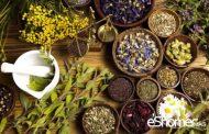 درمان دیابت با مصرف این 10 مواد طبیعی و گیاهی