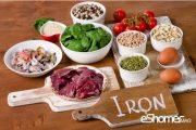 16 راهکار ساده افزایش جذب آهن در بدن چیست؟
