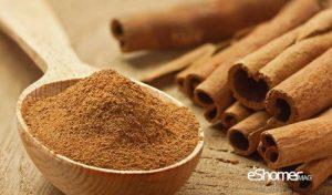 مجله خبری ایشومر cinnamon-eshomer-300x176 دارچین ، آشنایی با خواص درمانی ادویه ها در گیاه درمانی سبک زندگي میوه درمانی  گیاه درمانی دارچین خواص درمانی ادویه ادویه